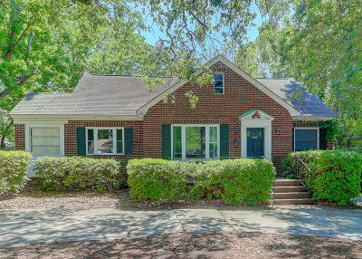 Charleston Single Family Home For Sale: 529 Saint Andrews Boulevard