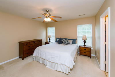 Goose Creek Single Family Home For Sale: 235 Border Road