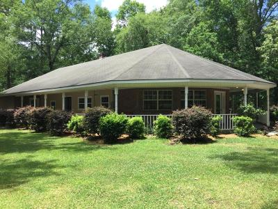Summerville Single Family Home For Sale: 110 Amber Road