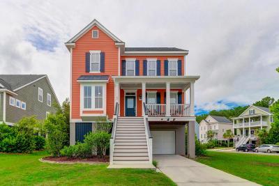 Daniel Island Single Family Home For Sale: 111 Sandshell Drive