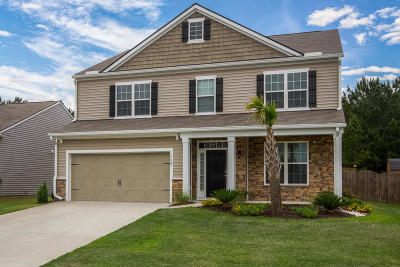 Single Family Home For Sale: 7682 High Maple Circle