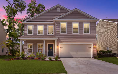 Single Family Home For Sale: 2043 Welsh Pony Drive