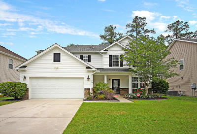 Single Family Home For Sale: 218 Austin Creek Court
