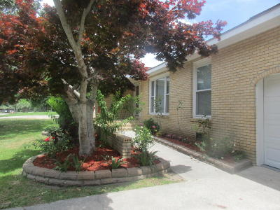 Goose Creek Single Family Home For Sale: 121 Mellard Drive