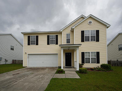 Single Family Home For Sale: 217 Port Drive