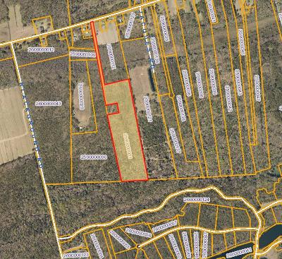 Johns Island Residential Lots & Land For Sale: 4651 River Road