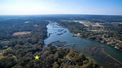 Berkeley County, Charleston County, Colleton County, Dorchester County Single Family Home For Sale: 3610 Legareville Road