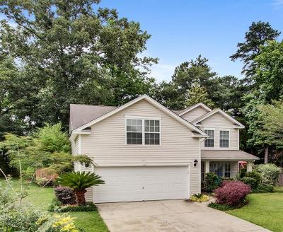Summerville Single Family Home For Sale: 216 Moon Shadow Lane