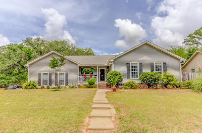 Charleston Single Family Home For Sale: 2296 Pristine View Road