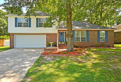 Goose Creek Single Family Home For Sale: 144 Fox Chase Dr