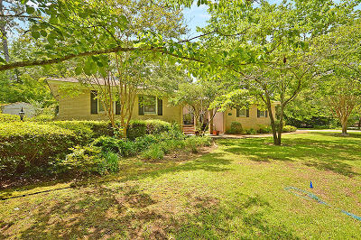 Charleston Single Family Home For Sale: 681 Oakfield Drive