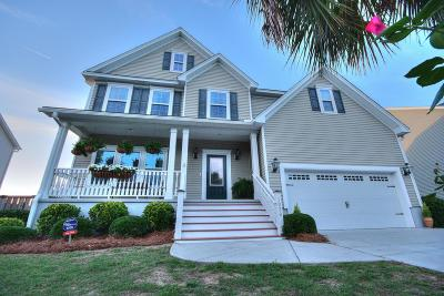 Charleston Single Family Home Contingent: 1038 Clearspring Drive