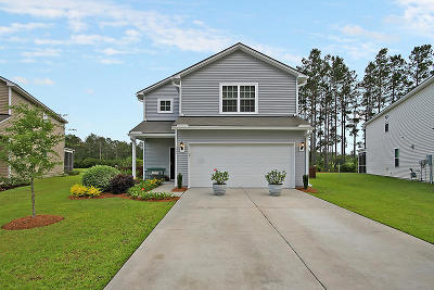 Summerville Single Family Home For Sale: 172 Brookhaven Road