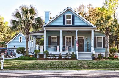 Summerville Single Family Home For Sale: 100 Danielle Lane