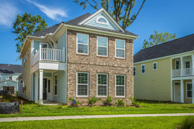 Charleston County Single Family Home For Sale: 2430 Lilytree Drive