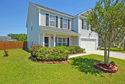 Goose Creek Single Family Home For Sale: 304 Briarbend Rd