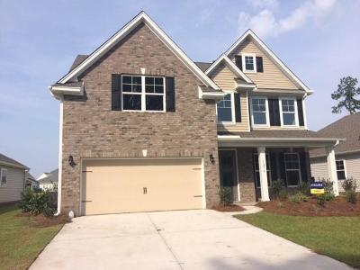 Johns Island Single Family Home For Sale: 1270 Hammrick Lane