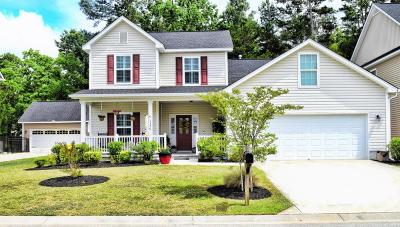 North Charleston Single Family Home For Sale: 5320 Natures Color Lane