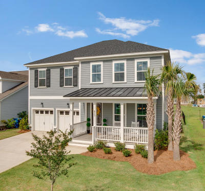 Summerville SC Single Family Home For Sale: $389,000