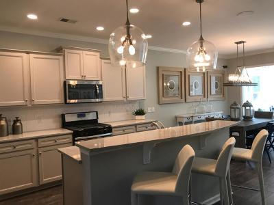Charleston County Single Family Home For Sale: 2039 Elvington Road
