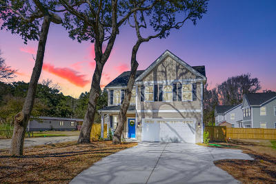Charleston County Single Family Home For Sale: 1526 Grimball Road Extension