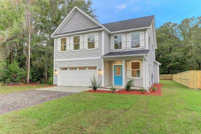 Charleston County Single Family Home For Sale: 1622 Donnie Lane Lane