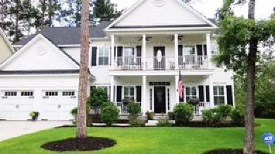 Summerville Single Family Home Contingent: 102 Ribbon Road