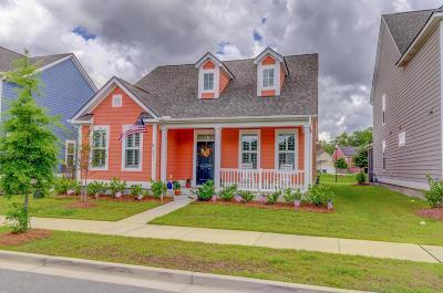 Carolina Bay Single Family Home For Sale: 2837 Stonestown Drive
