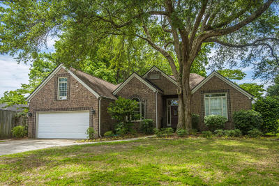 Mount Pleasant Single Family Home For Sale: 1392 Southlake Drive