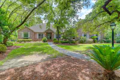 Charleston Single Family Home For Sale: 122 Cainhoy Landing Road