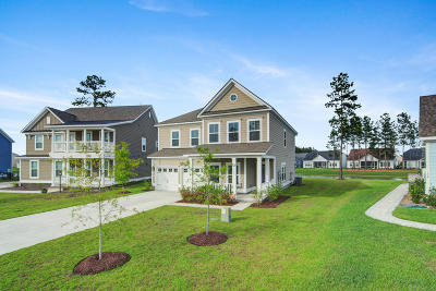 Single Family Home For Sale: 141 Calm Water Way