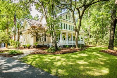 Berkeley County, Charleston County, Colleton County, Dorchester County Single Family Home For Sale: 465 Elfes Field Lane