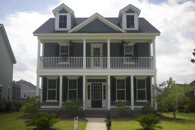Moncks Corner Single Family Home For Sale: 226 Foxbank Plantation Boulevard