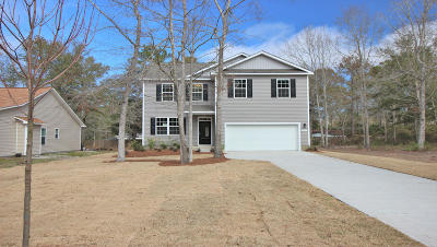 Berkeley County Single Family Home For Sale: 334 Knawl Road