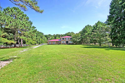 Johns Island Single Family Home For Sale: 3288 River Road