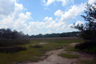 Edisto Island SC Residential Lots & Land For Sale: $89,500