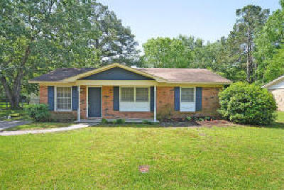 Summerville Single Family Home Contingent: 105 Hope Drive