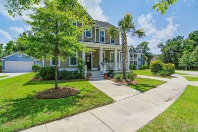 Carolina Bay Single Family Home For Sale: 3021 Coopers Basin Circle