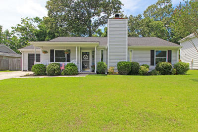 Charleston Single Family Home Contingent: 156 Blue Ridge Trail