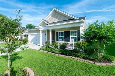 Ladson Single Family Home For Sale: 3714 Blackjack Road