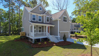 Charleston Single Family Home For Sale: 1466 Brockenfelt Drive