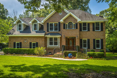Single Family Home For Sale: 585 Flannery Place