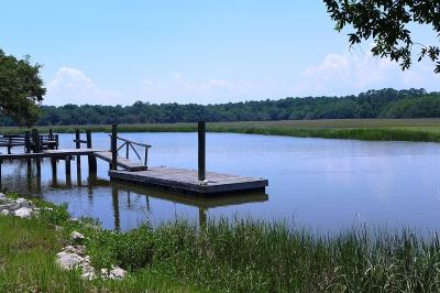 Edisto Island SC Residential Lots & Land For Sale: $329,000