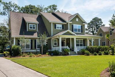 Charleston Single Family Home For Sale: 135 Brogun Lane