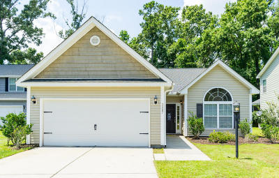 Johns Island Single Family Home For Sale: 3487 Field Planters Road