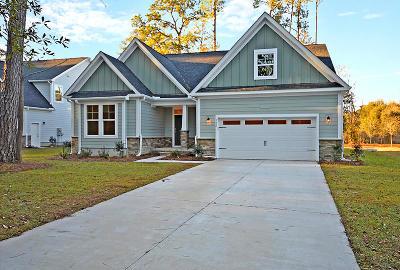 Summerville Single Family Home For Sale: 152 Shepard Street