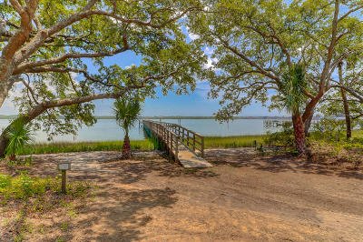 Berkeley County, Charleston County Residential Lots & Land For Sale: 1472 Wando View Street