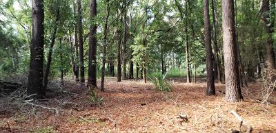 Edisto Island SC Residential Lots & Land For Sale: $63,000
