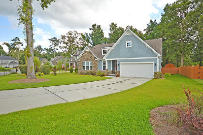 Summerville Single Family Home For Sale: 140 Tyvola Drive