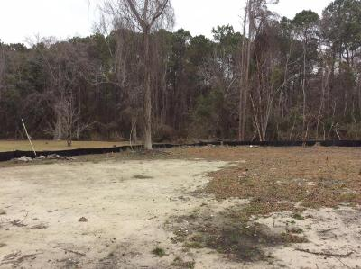 Residential Lots & Land For Sale: 1016 Theodore Road